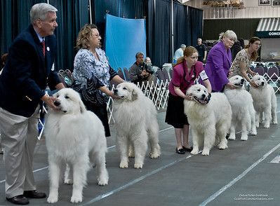 Great Pyrs and Peers-616