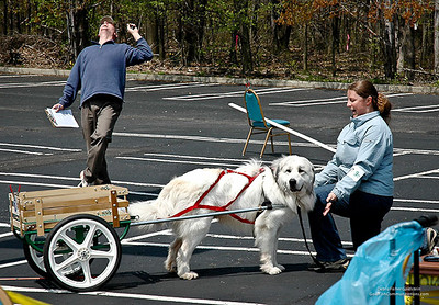 Great Pyrs and Peers-9