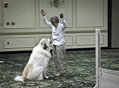 Great Pyrs and Peers-05