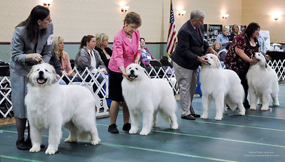 Great Pyrs and Peers-0280