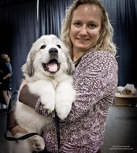 Great Pyrs and Peers-4-2