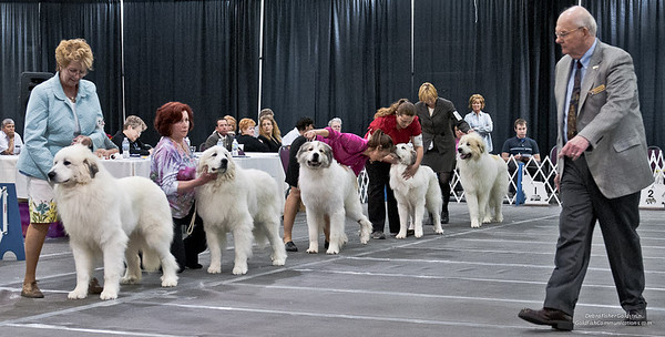Great Pyrs and Peers-1-2