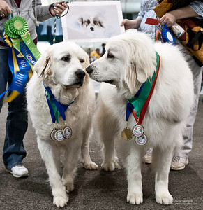 Great Pyrs and Peers-509