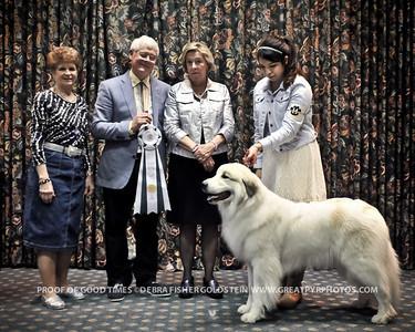 Puppy Invitational Awards-8195