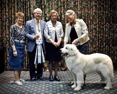 Puppy Invitational Awards-4539