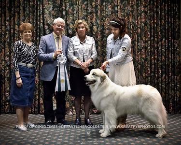 Puppy Invitational Awards-4560