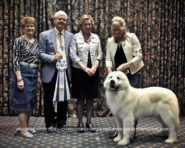 Puppy Invitational Awards-8171