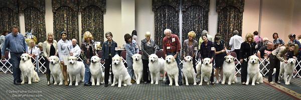 Puppy Invitational Awards-4469