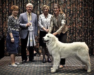 Puppy Invitational Awards-8162