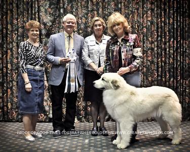 Puppy Invitational Awards-8156