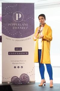 PLConnectPM-511