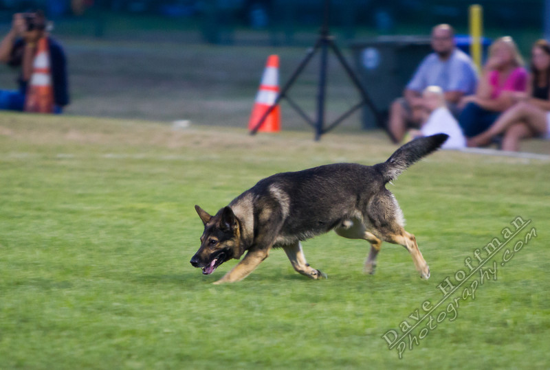 K-9 Demo for Jacob Myers-9826