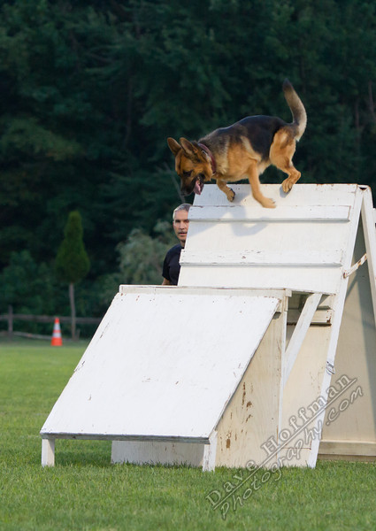 K-9 Demo for Jacob Myers-9789