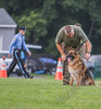 K-9 Demo for Jacob Myers-9728