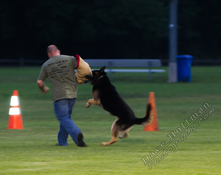 K-9 Demo for Jacob Myers-9871