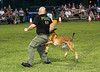 K-9 Demo for Jacob Myers-9843