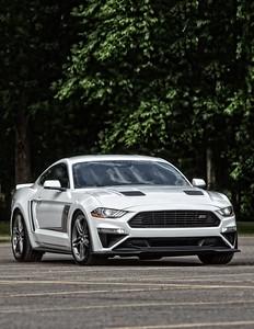 Mustang 4-Edit-2