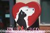 San Francisco SPCA 140th Anniversary Celebration