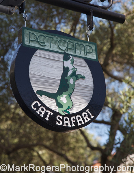 Pet Camp - Cat Safari Facility <br /> (covered for Northern California Experience - SF Chamber of Commerce publication)