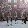 Town Residential Launches 'Look Up New York'