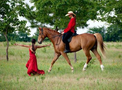05-29-10 Equus Projects Horse Dancing