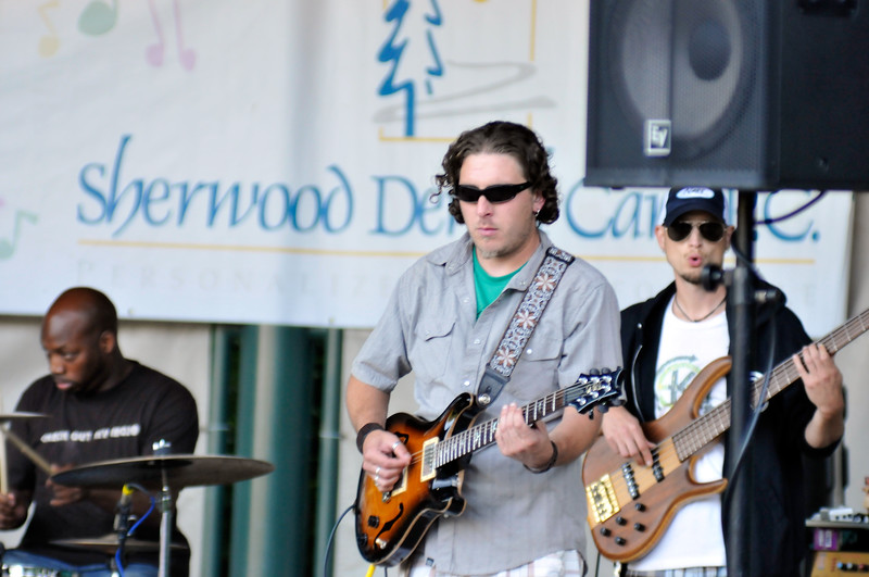 2011_sherwood_musicongreen_KDP7386_072711.jpg