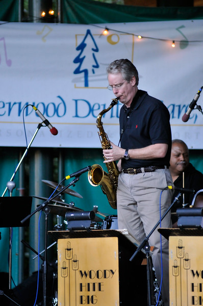 2011_sherwood_musicongreen_KDP0236_081711.jpg