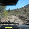 beautiful old roadbed