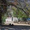 Rancho El Bosque - sehr romantisch und abgelegen - Tag 2