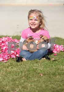 """Brenlee Peiffer, 3, of Lindale, holds a puppy from MuttNation Foundation during Pinktoberfest, hosted by The Cannery Lindale, The Pink Pistol, Love and War in Texas and the City of Lindale Oct. 22, 2016 in Lindale. The event, dubbed, a """"Texas Size Block Party"""" featured games, live music, a chili cook-off and MuttNation Foundation pet adoption. Pinktoberfest also served as the official grand opening of Love and War in Texas and The Pink Pistol.   (Sarah A. Miller/Tyler Morning Telegraph)"""