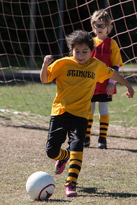 110213 Stinger Soccer-104