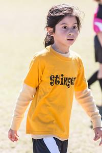 110213 Stinger Soccer-95