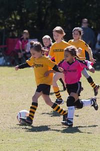 110213 Stinger Soccer-28