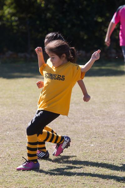 110213 Stinger Soccer-13