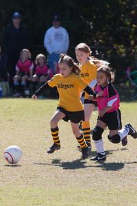 110213 Stinger Soccer-25