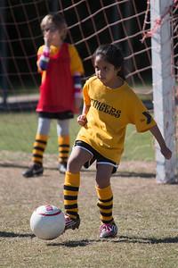 110213 Stinger Soccer-62