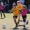 110213 Stinger Soccer-26