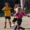 110213 Stinger Soccer-20