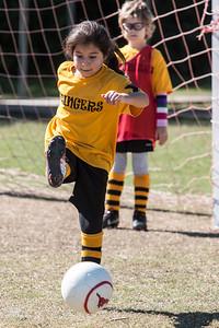 110213 Stinger Soccer-105