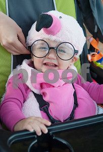 Greenlee Fritz, 1, wears a flamingo costume during the Fit City Day in the Park event at Fun Forest Park in Tyler Saturday Oct. 29, 2016. Fit City Coalition sponsored fitness activities such as yoga and zumba classes, health screenings, a plank contest and health related vendors at the annual event.  (Sarah A. Miller/Tyler Morning Telegraph)