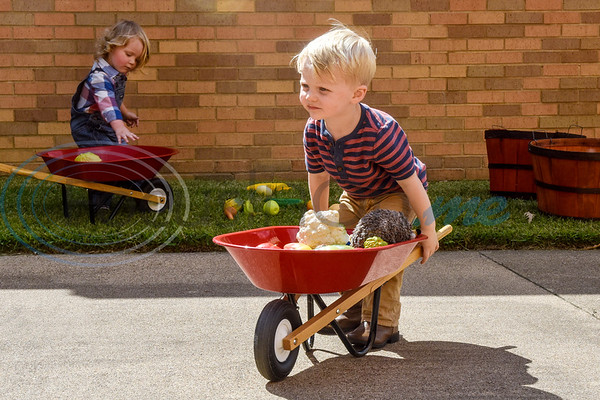 Felix Knight and Reid Lash, both 2, play with toy food and wheelbarrows during the Kids Kaleidoscope Preschool Toddler Fair at Pollard United Methodist Church in Tyler, Texas, on Thursday, Oct. 4, 2018. (Chelsea Purgahn/Tyler Morning Telegraph)