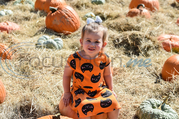 Bristol McIntyre, 2, smiles for a photo in a pumpkin patch at the 11th Annual Family Fun Day in Jacksonville. The festivities were held at Joe Smith Farms on Saturday, October 5. (Jessica T. Payne/Tyler Morning Telegraph)