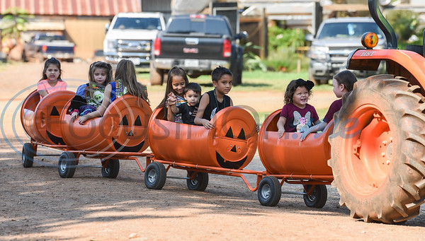 Young children get a ride in a train decorated as pumpkins while attending the 11th Annual Family Fun Day in Jacksonville. The festivities were held at Joe Smith Farms on Saturday, October 5. (Jessica T. Payne/Tyler Morning Telegraph)