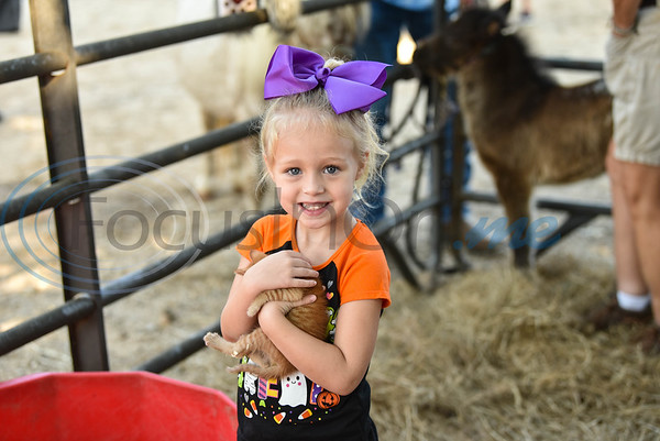 Skyler Spraggins, 3, holds a kitten in a petting zoo at Joe Smith Plant Farms for their Annual Family Fun Day on Saturday, October 5. This year marks the events 11th year. (Jessica T. Payne/Tyler Morning Telegraph)