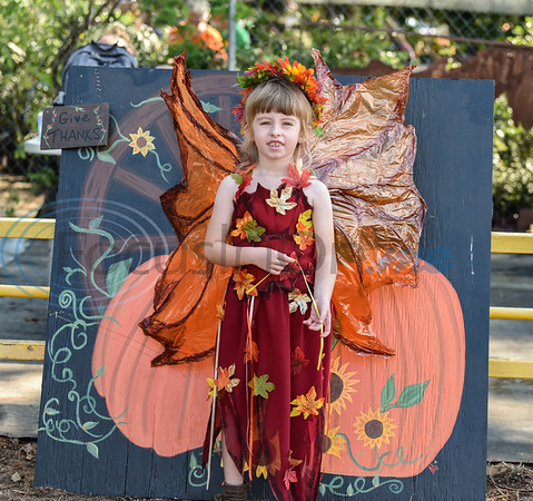 Kailyn Merlin, 6, smiles for a photo dressed as a fairy at the 11th Annual Family Fun Day hosted by Joe Smith Plant Farms. The free event took place on Saturday, October 5 and included face painting, petting zoo, food, games and hay rides. (Jessica T. Payne/Tyler Morning Telegraph)