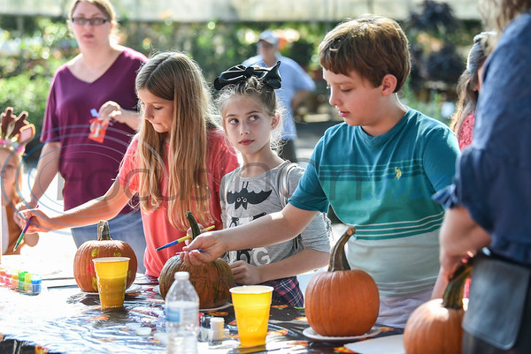 Children paint pumpkins at the 11th Annual Family Fun Day hosted by Joe Smith Plant Farms. The free event took place on Saturday, October 5 and included face painting, petting zoo, food, games and hay rides. (Jessica T. Payne/Tyler Morning Telegraph)