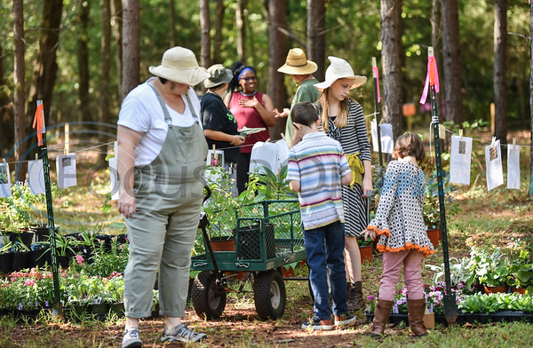 A family picks out plants at the one-day plant sale at Ruth Bowling Nichols Arboretum as part of the open day festivities for the Scarecrow Trail in Jacksonville. The two-week event will run from October 5 through 17 and is hosted by the Cherokee County Master Gardeners. (Jessica T. Payne/Tyler Morning Telegraph)