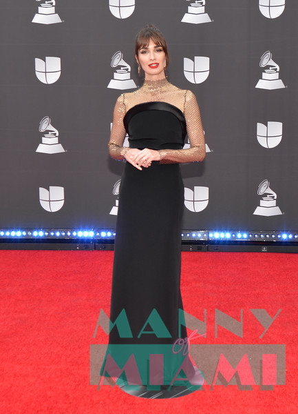 LAS VEGAS, NV - NOVEMBER 14:  Paz Vega at the Latin Grammys at the MGM Grand in Las Vegas, Nevada on November 14, 2019. (Photo by Manny Hernandez)