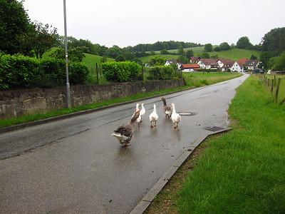 120607_09 HU Travellers Meeting 2012 Germany