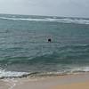Surfers at Diamond Head Beach